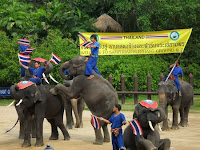 Thailand Day Tour Program - Samphran Elephant Ground & Zoo