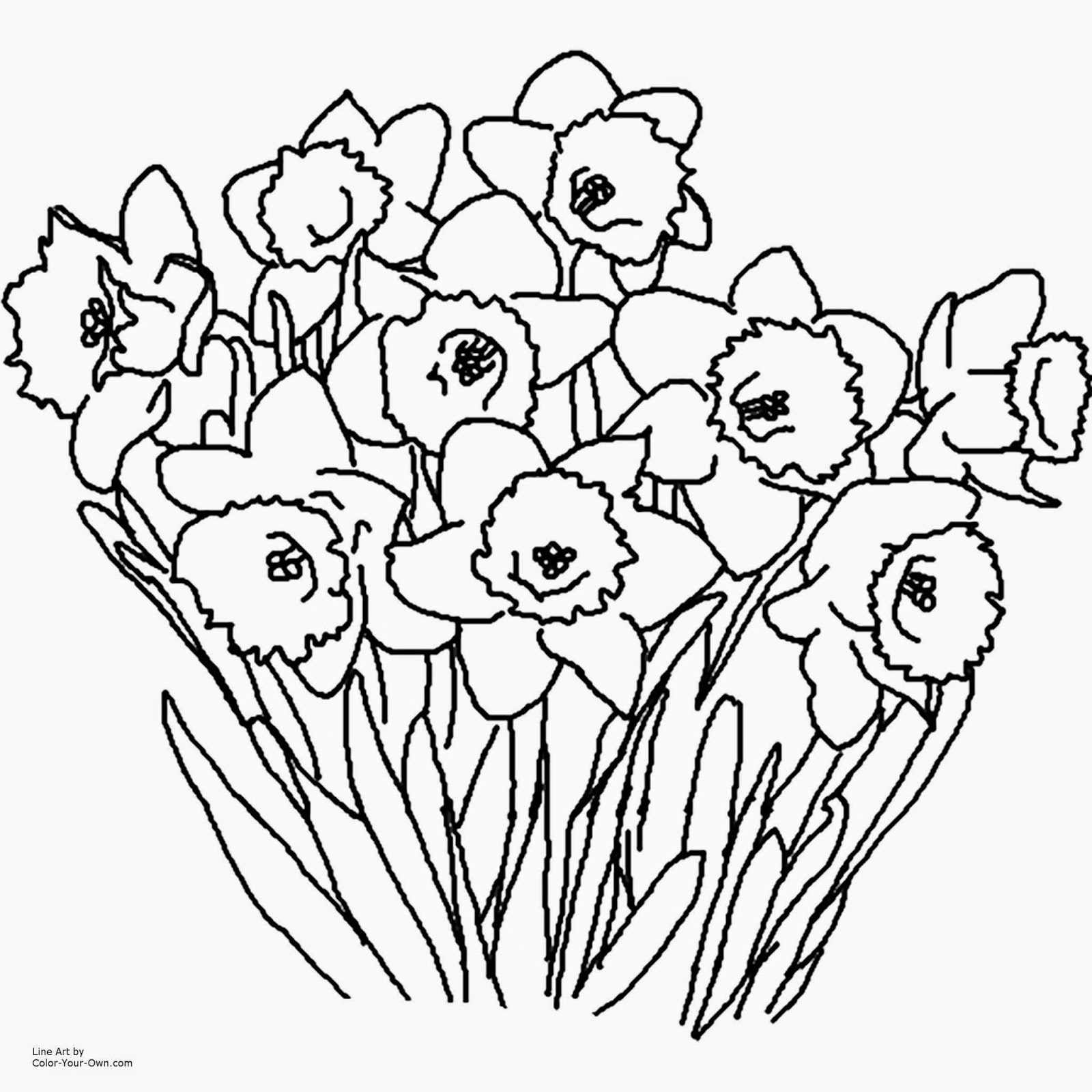 Spring colouring pages free - Free Downloadable Spring Coloring Pages Flower Coloring Pages 4