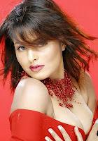 Nangi Bollywood Hot and Beautiful Photos Gallery