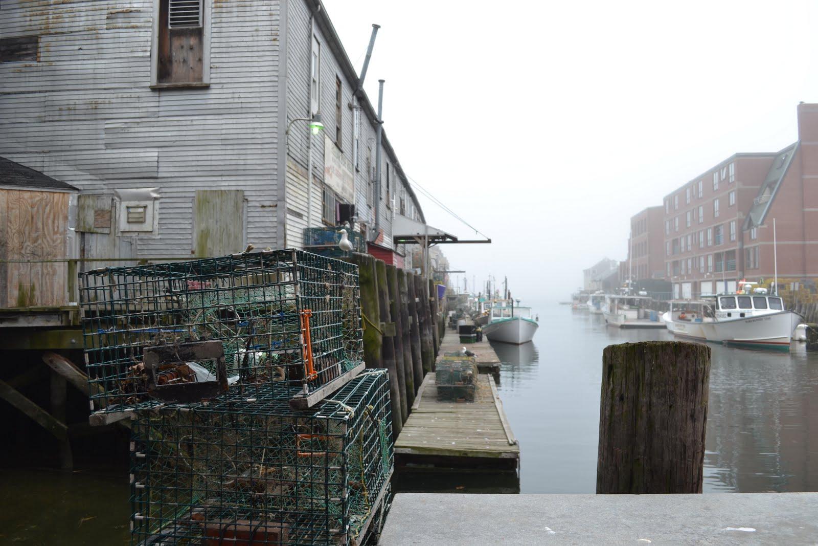 June 2011 aesthetic dalliances for Fish market portland maine