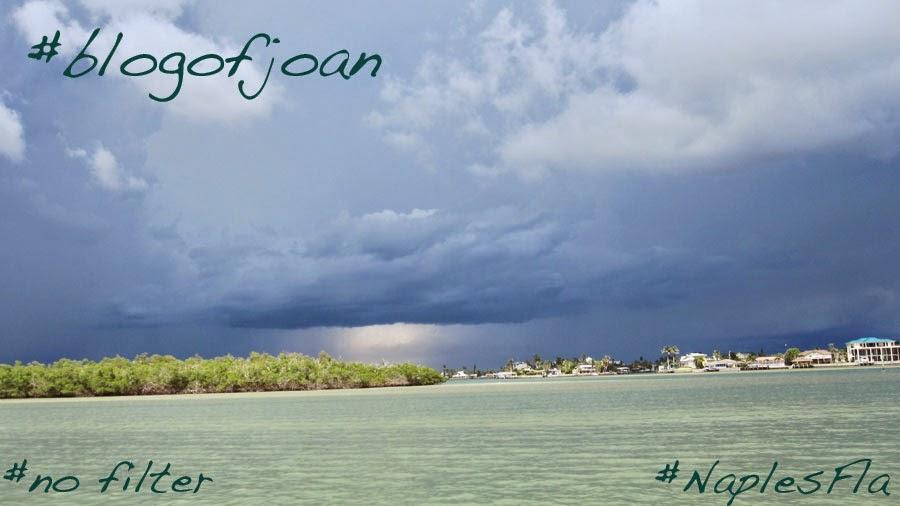 blog of joan