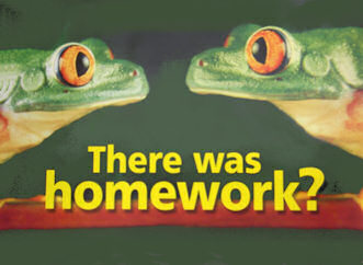 Was there any homework