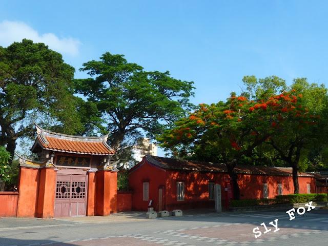 台南孔廟鳳凰木