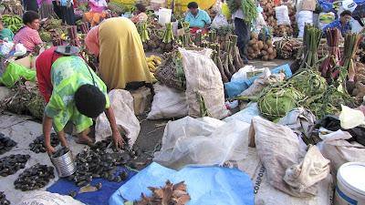 suva city fiji market