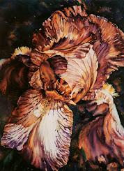 Bearded Iris #1