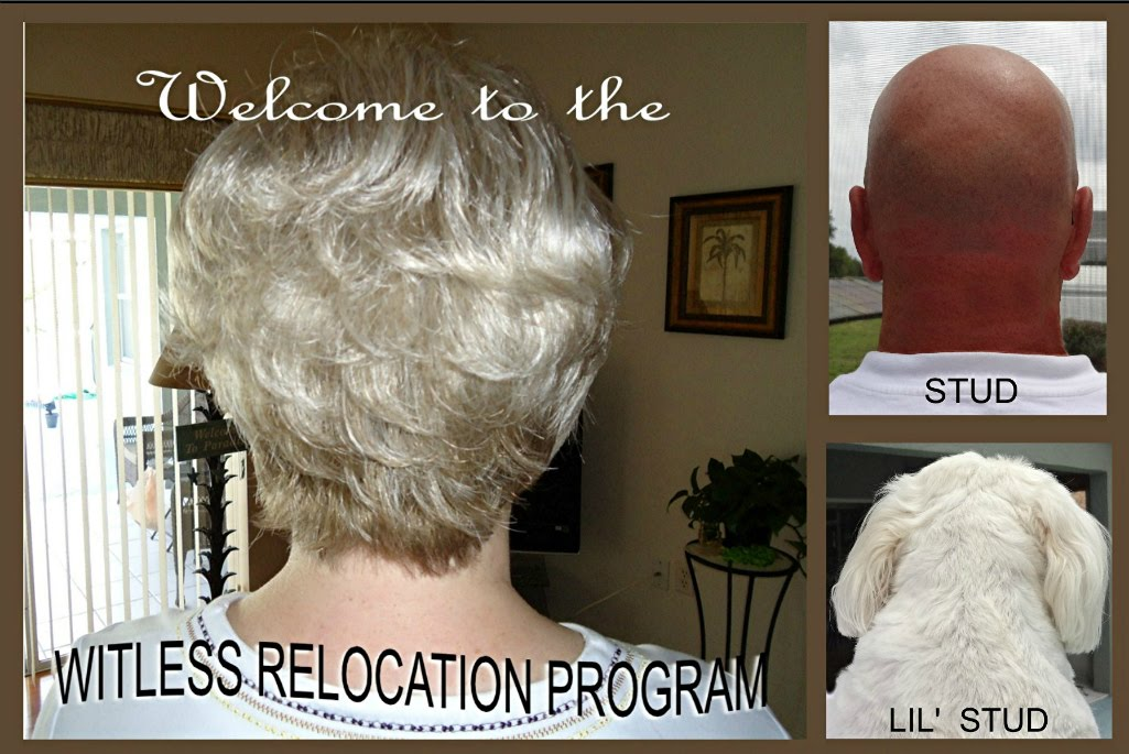 WITLESS RELOCATION PROGRAM