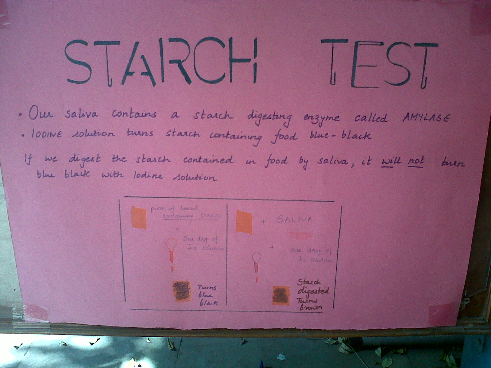 the aim for the test for starch Seliwanoff's test objective the seliwanoff test is used to di distinguishes between aldose and ketose sugars base theory ketoses are distinguished from aldoses via theirketone/aldehyde functionality.