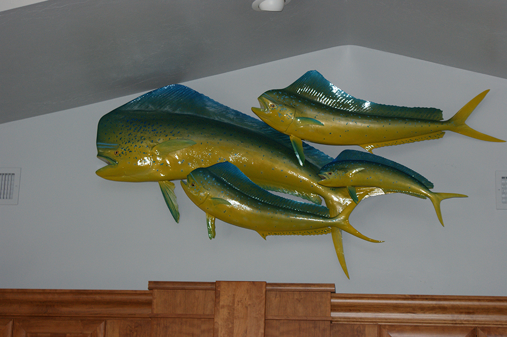decorating with fish mounts professionally done or diy