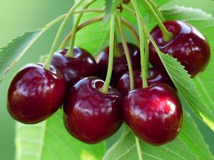 Pulpa Natural de Cereza+Mix de Berries 100% Natural sin Conservantes y Congelada