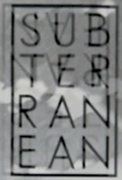 subterranean skateboards ©