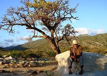 Pütchipü'ü. El palabrero wayuu