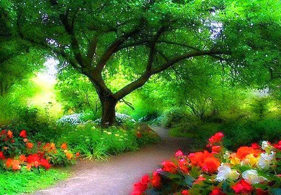 Keindahan alam beri Ketenangan Dan Kedamaian