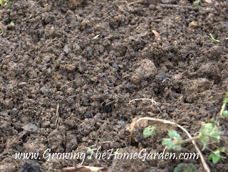 photo of soil