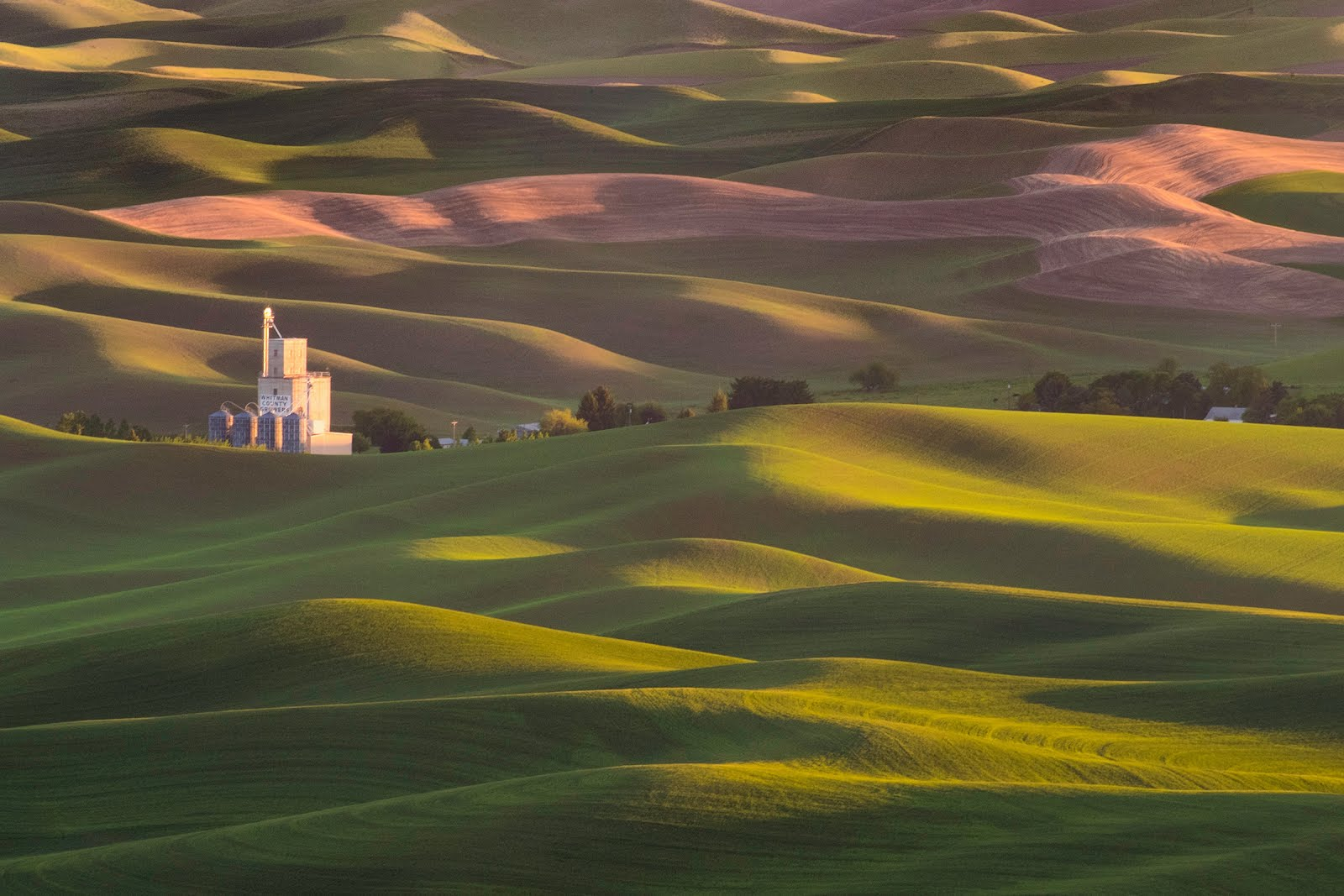 Palouse May 18-23 / John Barclay & Rad Drew