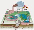 Schematische weergave waterketen. Cover Medicijnverontreiniging in het beheergebied van Wetterskip Fryslân