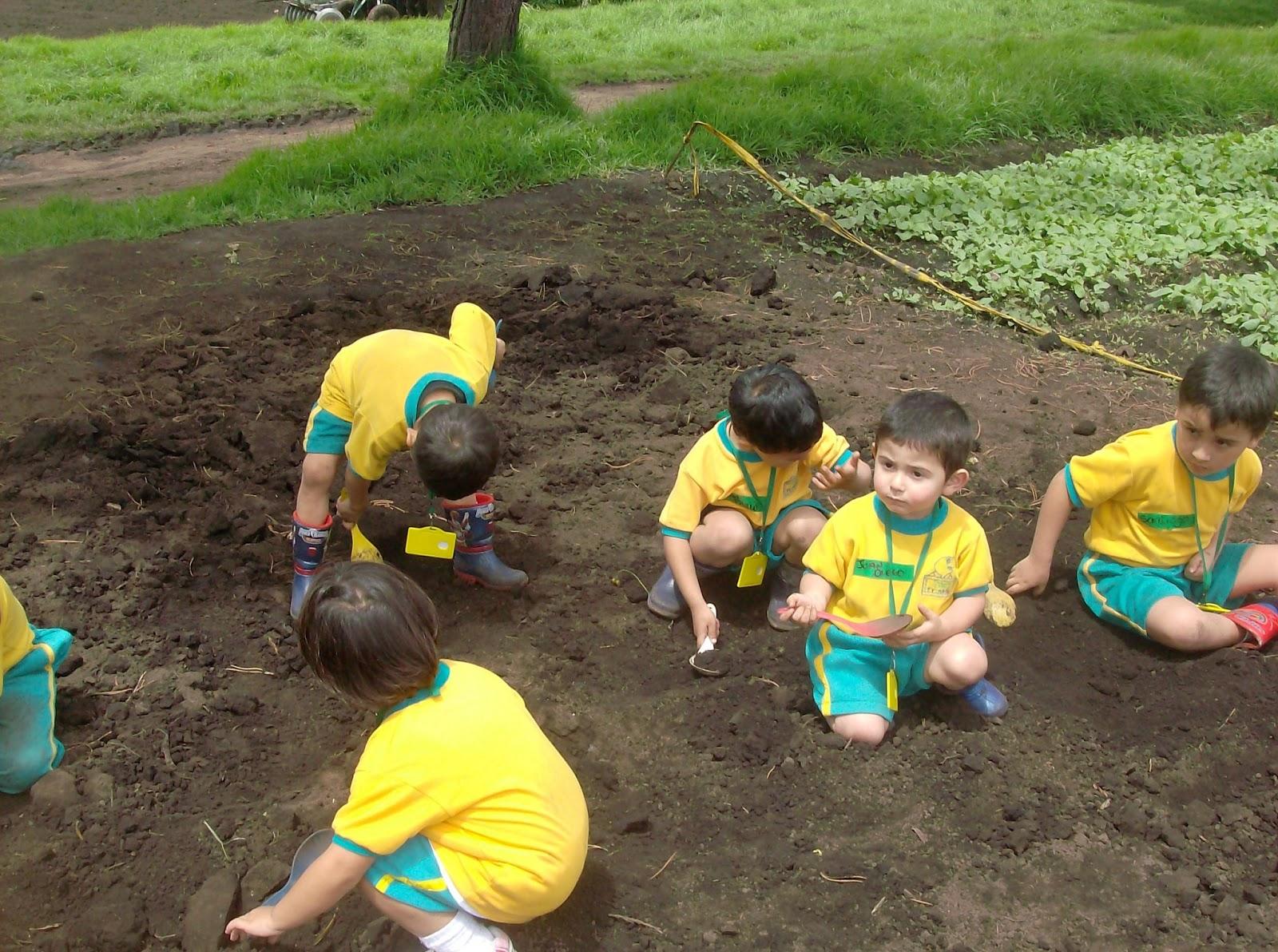 Jardin infantil los amiguitos de franklin for Amiguitos del jardin