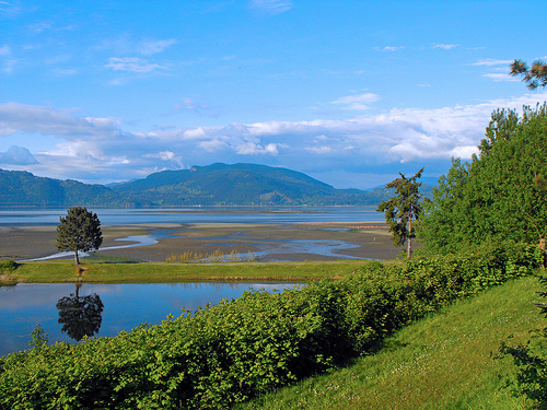 Samish Island Real Estate For Sale