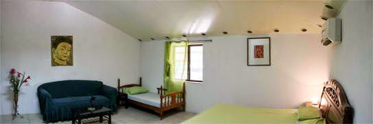 Fully Furnished Extra Large Bedroom with Fast Wifi and Personal Bathroom