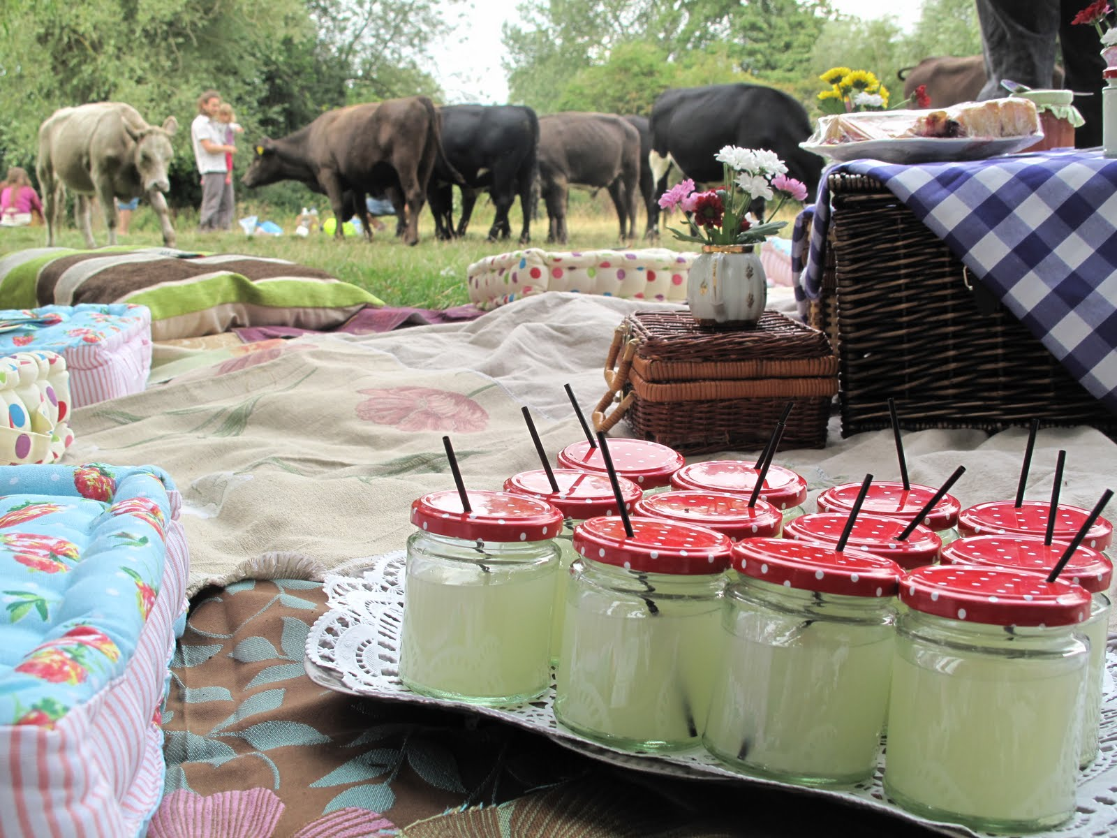 The Punting Picnic Tea Party Miss Sue Flay