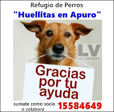 """REFUGIO DE PERROS """"HUELLITAS EN APURO"""""""