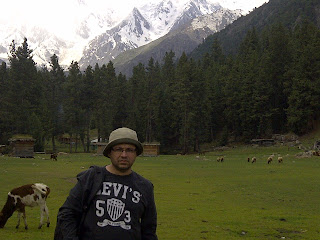 Ali Hameed - Fairy Meadows