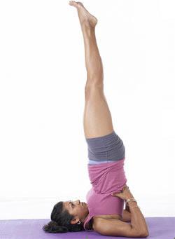 sarvangasana posture