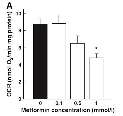 Low dose metformin