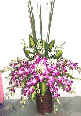 Karangan Bunga Papan Januari