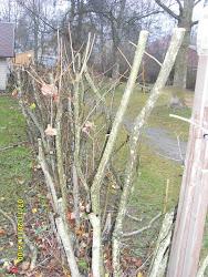 Kotitalouspalveluita Pirkanmaalla savuttomasti ja raittiisti orapihlaja-aidat, nurmikot kuntoon