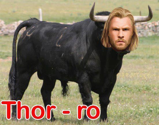 Thor+ro.jpg