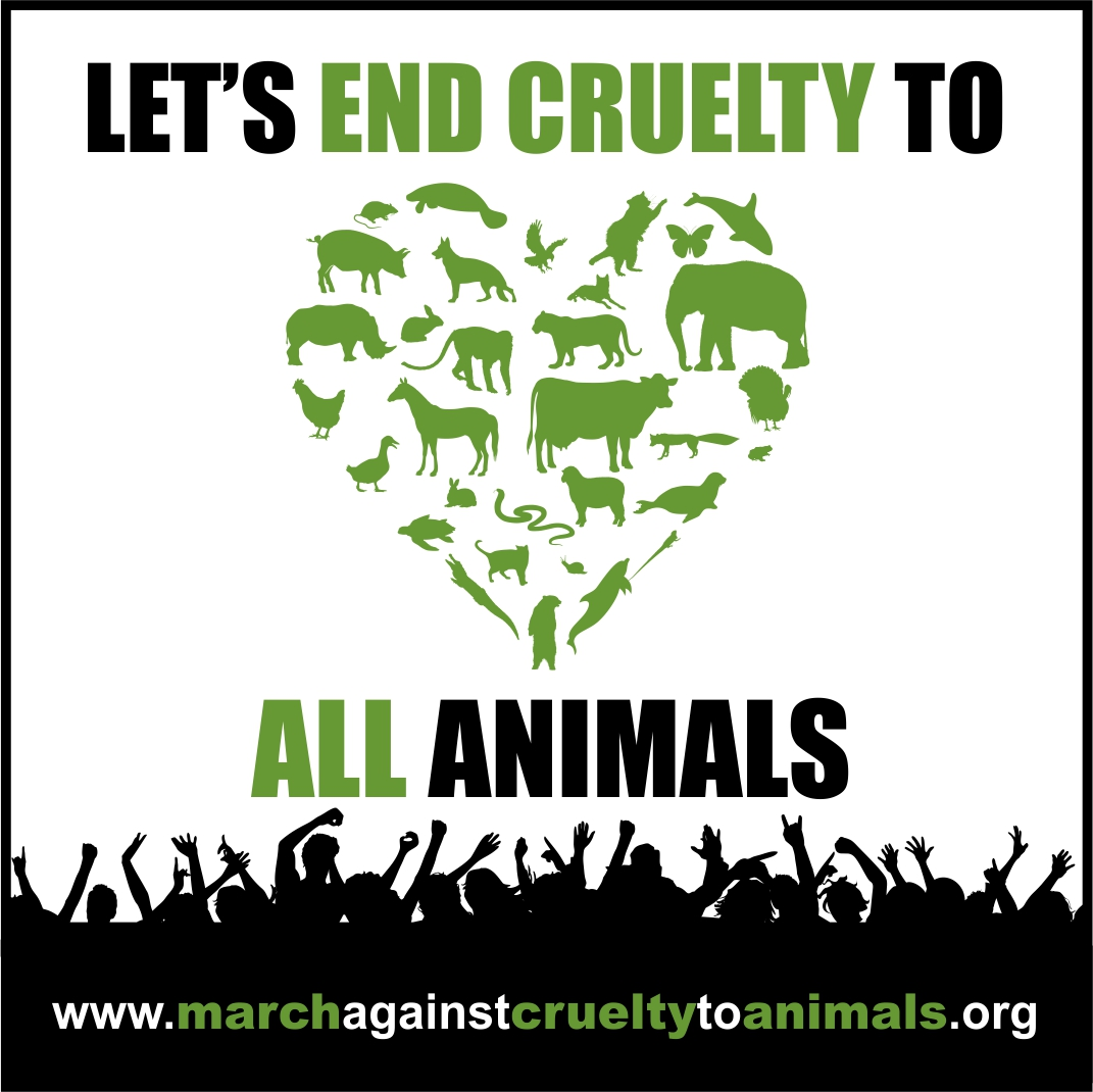 Animal Cruelty Quotes Justice For Mary  Animal Advocacy Join The March Against Cruelty