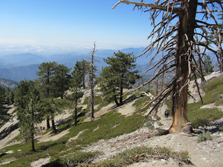 View southwest from Old Baldy Trail
