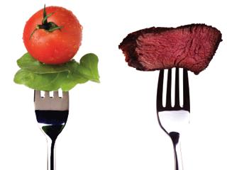 dieta vegetariana omnivoro o hervivoro
