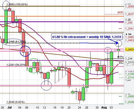 Daily Chart analysis Euro