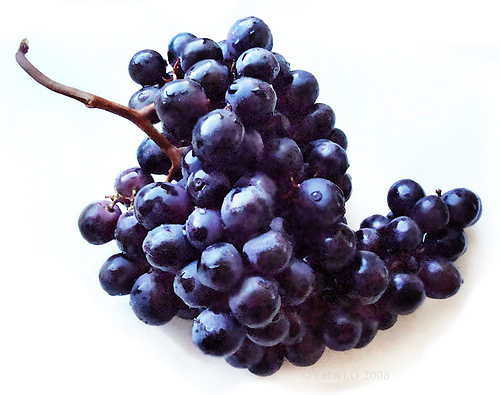 Black Seedless Grapes blackgrapes and candie...