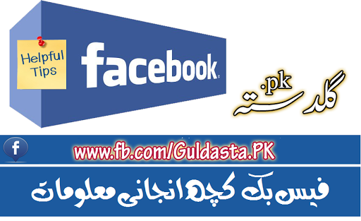 Hack Facebook account in Urdu, Remove Facebook Timeline In Urdu, Tips to Improve Your Privacy on Facebook, Computer Information in Urdu, mark zuckerberg in urdu, history of facebook pdf, history of facebook layouts, history of facebook changes