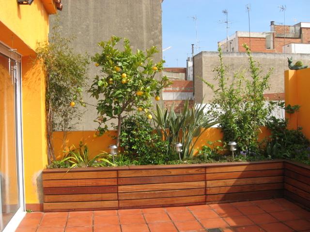 Arte y jardiner a el jard n en macetas Plantas jardineras exterior
