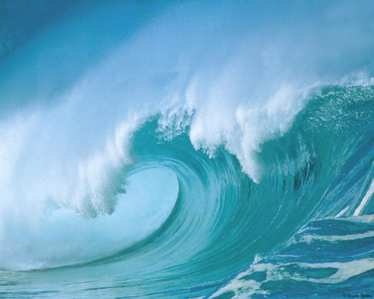 fondos de mar transparente - photo #17