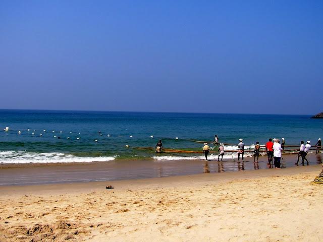 индийские рыбаки тянут сеть