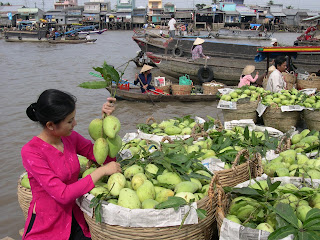 Majestic Mekong Delta Tour from Saigon to Siem Reap 1