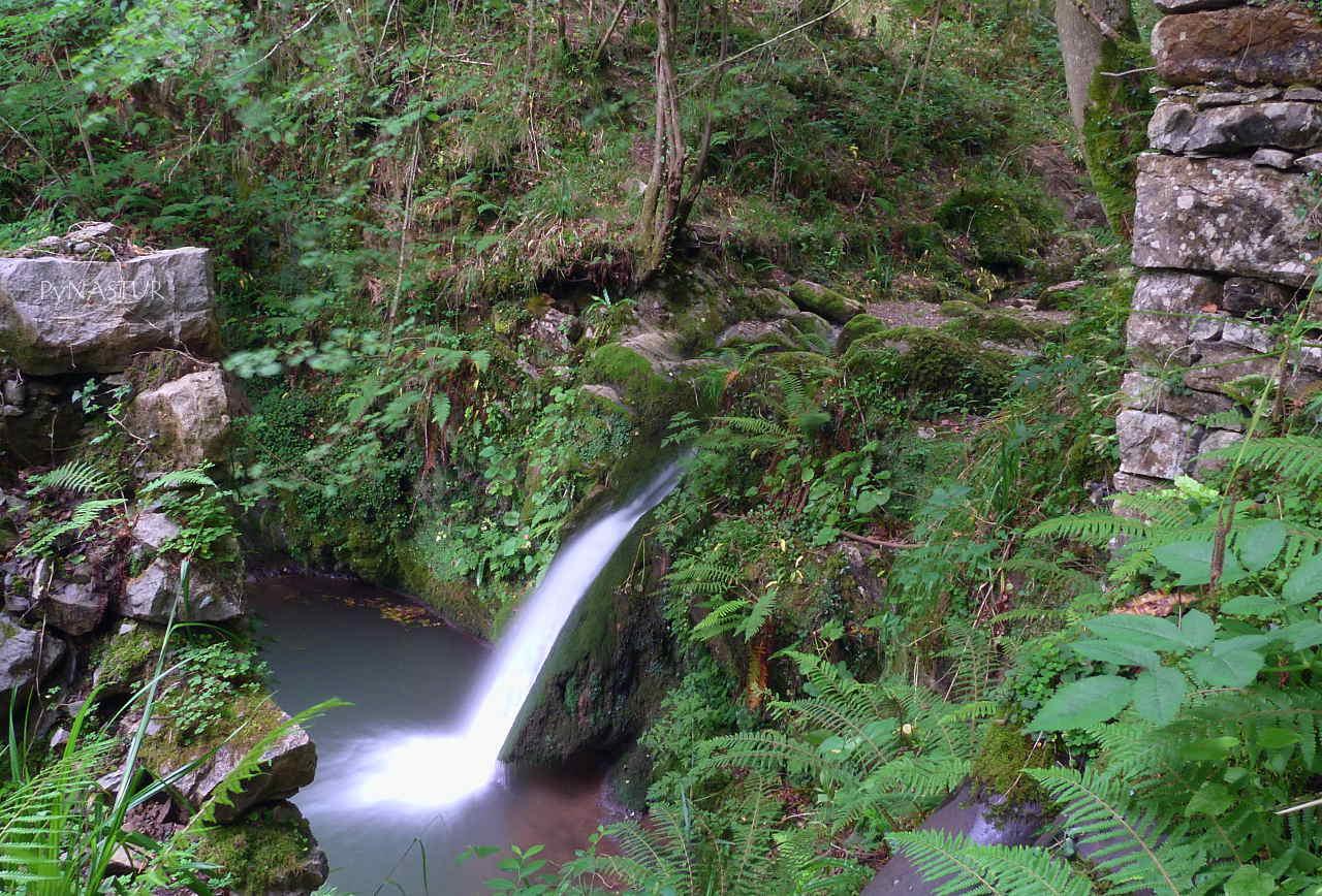 Pequeña cascada en el Río Viescas - Las Xanas