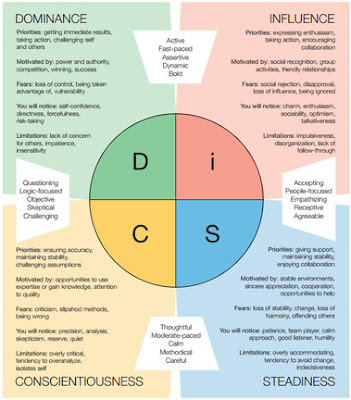 Using The Disc Profile 5 Interview Tips Using The Disc
