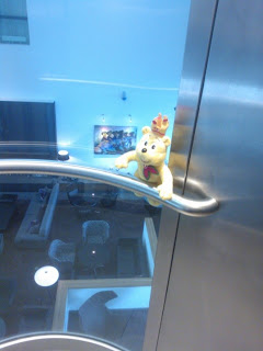 Pom Bear in a glass lift