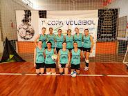 1 Copa Voleibol Esteio