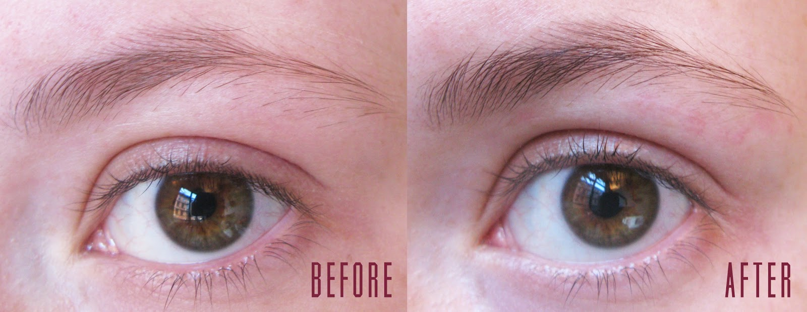 eyelure dybrow brown review before and after