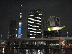 Tokyo, Japan, February 2014