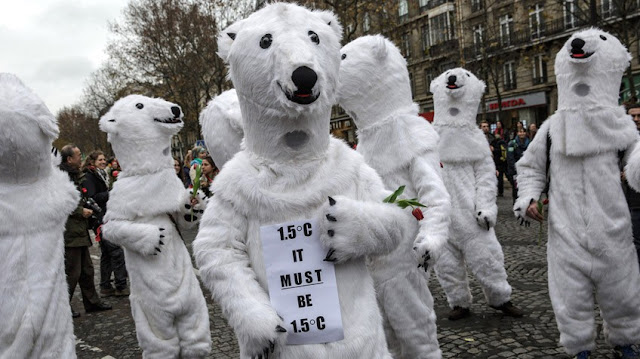 clima, París, ecocidio,