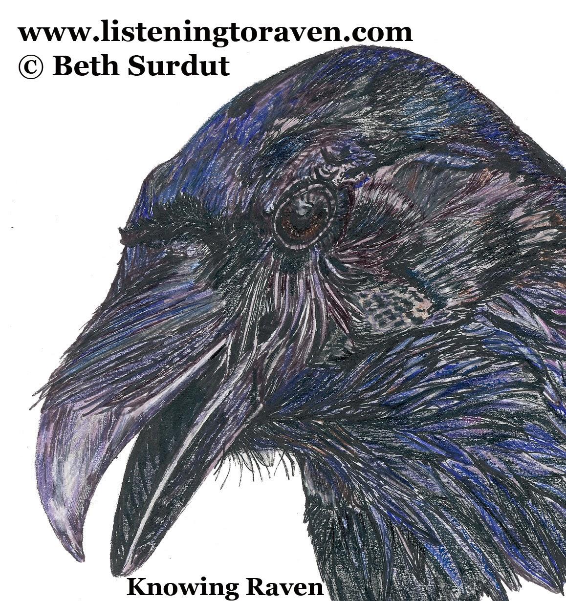 http://www.listeningtoraven.com