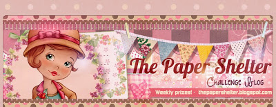 'The Papershelter' Challenge blog
