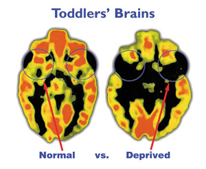 Early Brain Development Matters! http://braininsights.blogspot.com/2012/09/brain-insights-to-share-growing-brain.html